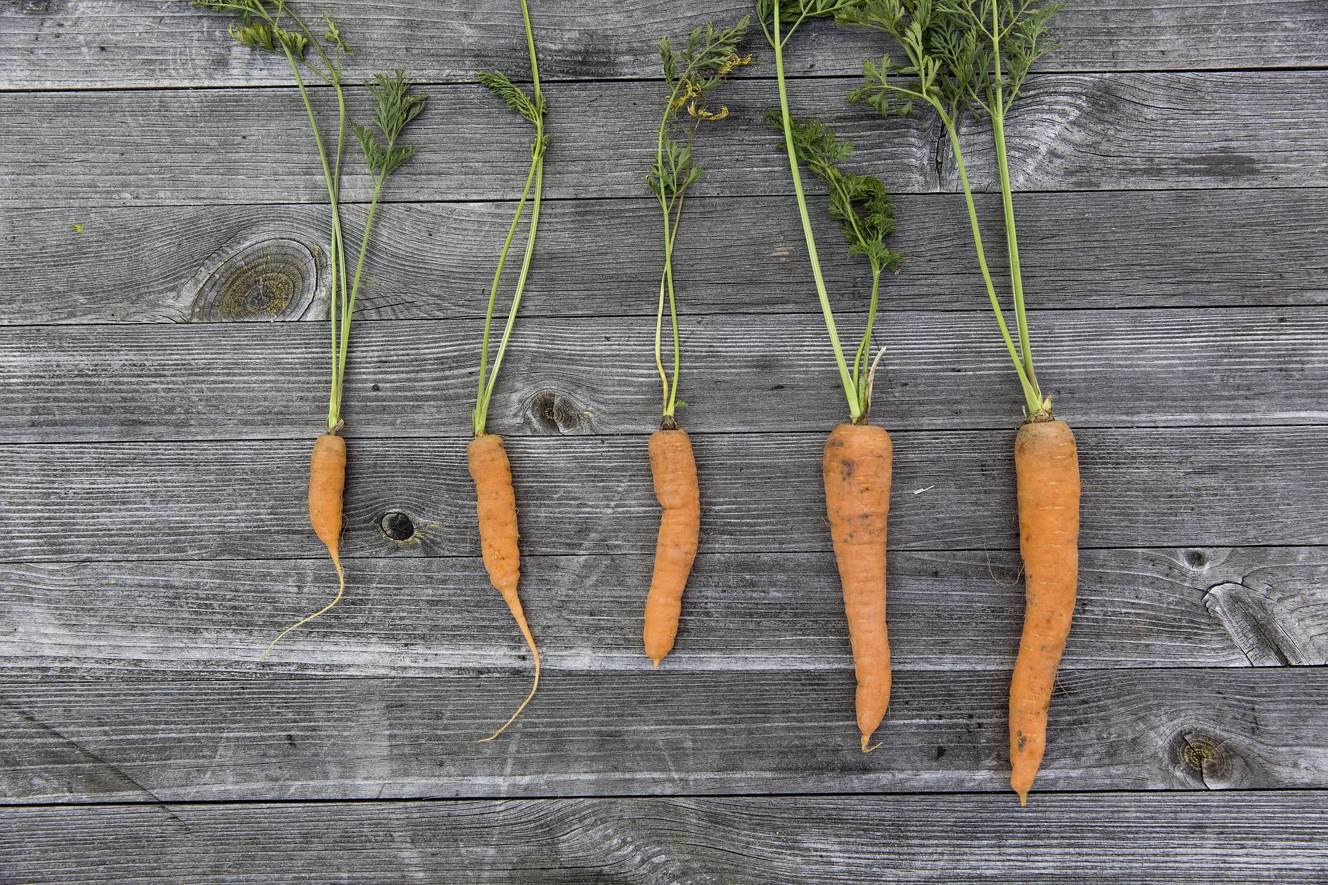 La zanahoria se ha convertido en uno de los vegetales más utilizados en repostería