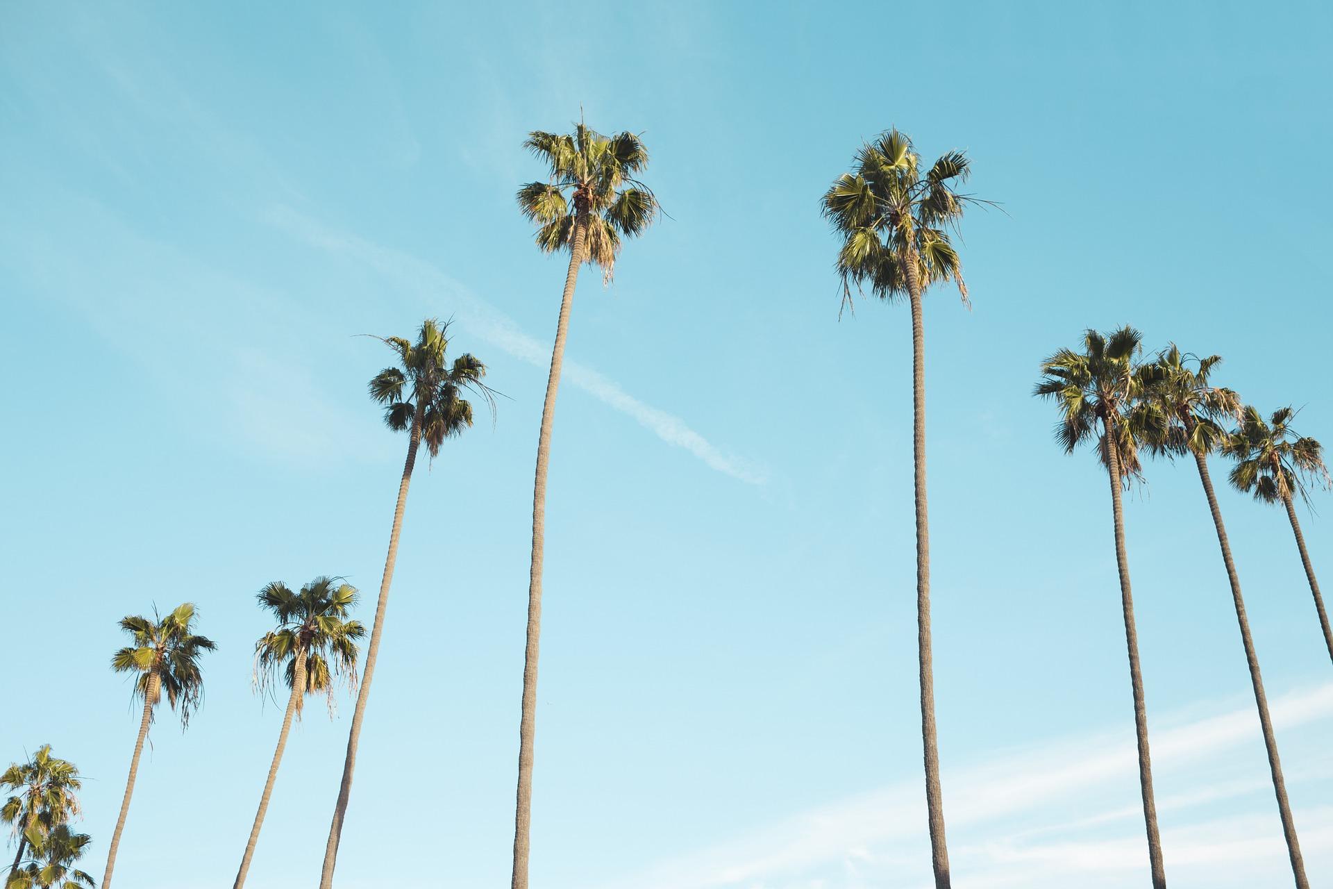 Mucha gente asocia el cielo azul como sinónimo de felicidad